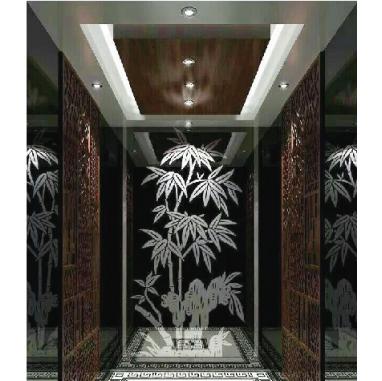 浙江吊顶不锈钢后壁艺术玻璃镜乘客电梯