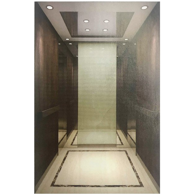 浙江吊顶不锈钢LED灯乘客电梯