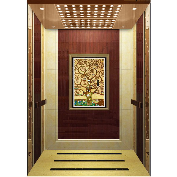 浙江吊顶玫瑰金镜面乘客电梯